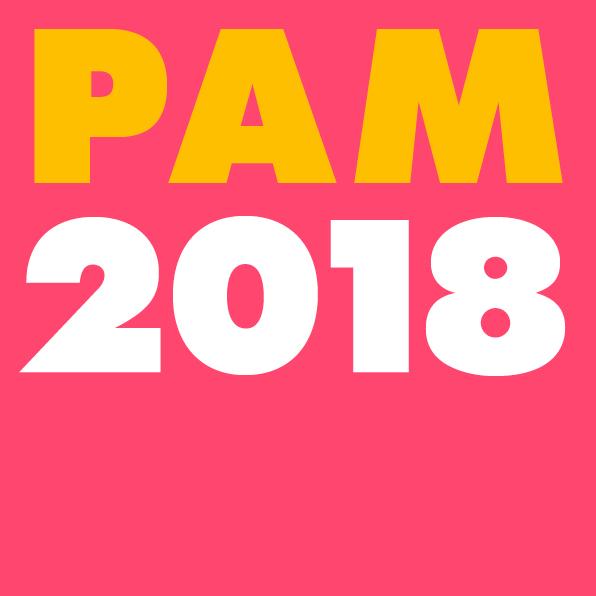 Logo_PAM2018_RGB